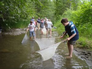 kids rescuing fish fry